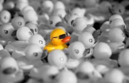 Duck - Greatness