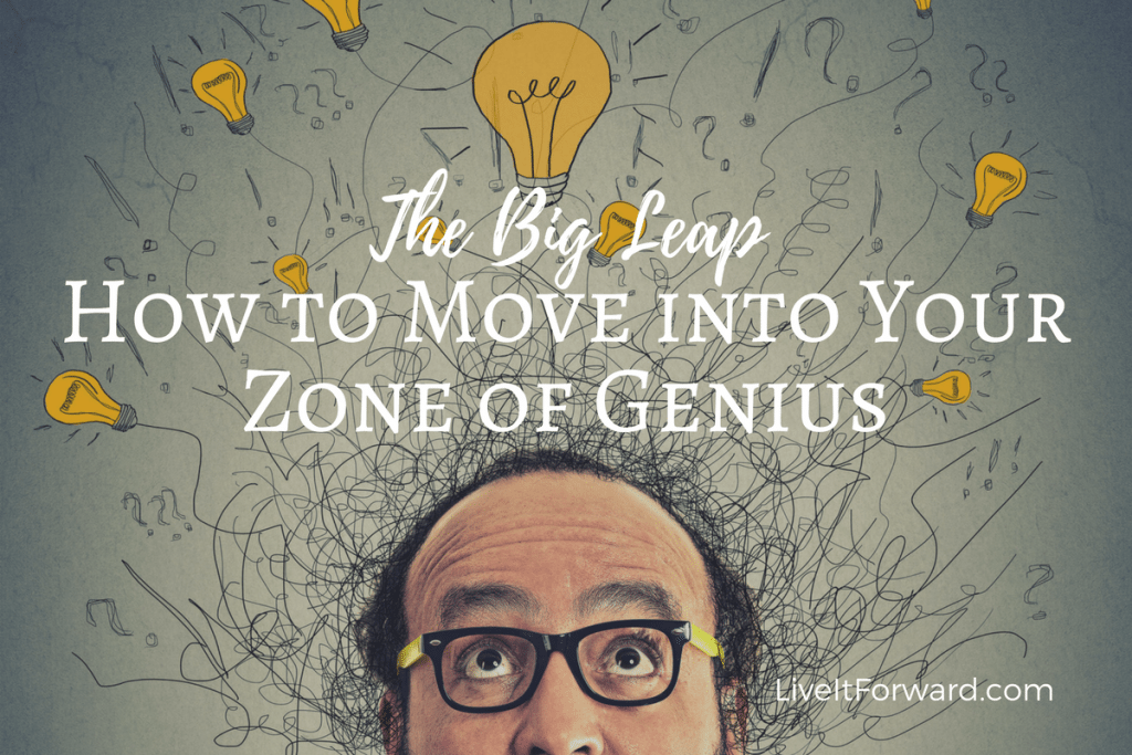 The Big Leap - How to Move into Your Zone of Genius